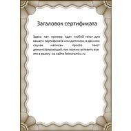 Рамка под сертификат или дипломную работу Фото в рамку  Рамка под сертификат или дипломную работу